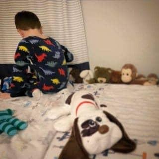 boy with stuffed animals