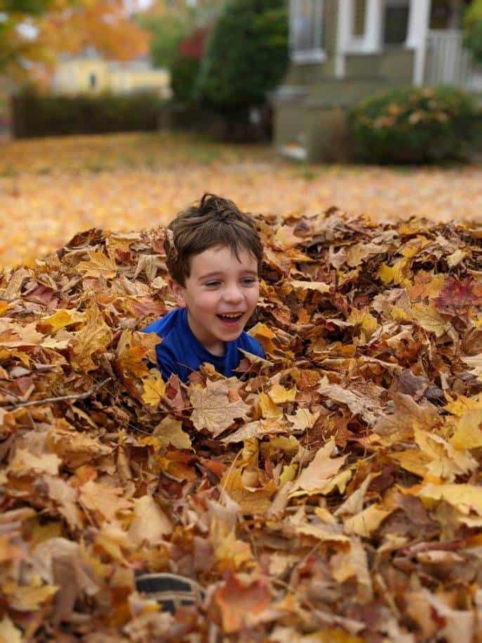 kid in leaf pile